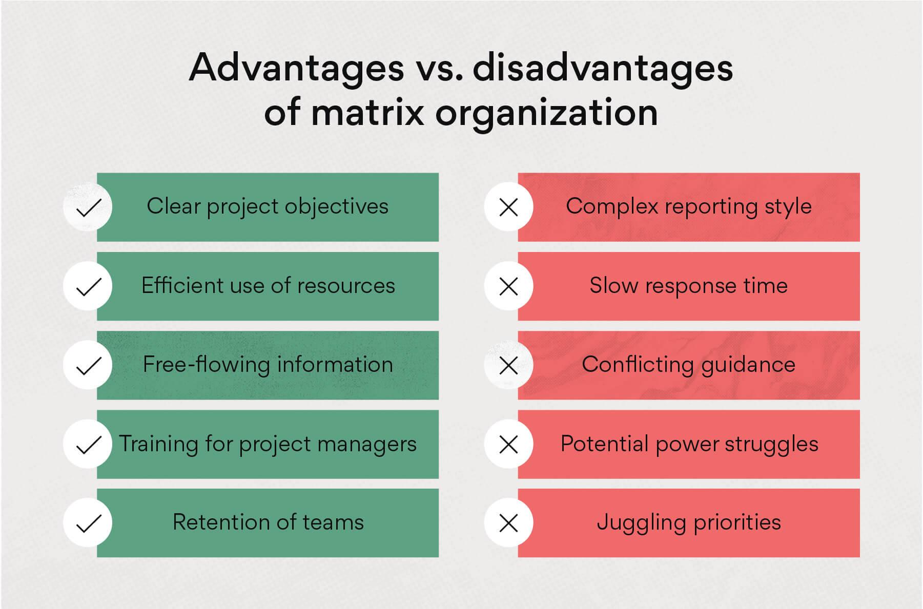 Advantages vs disadvantages of matrix organization