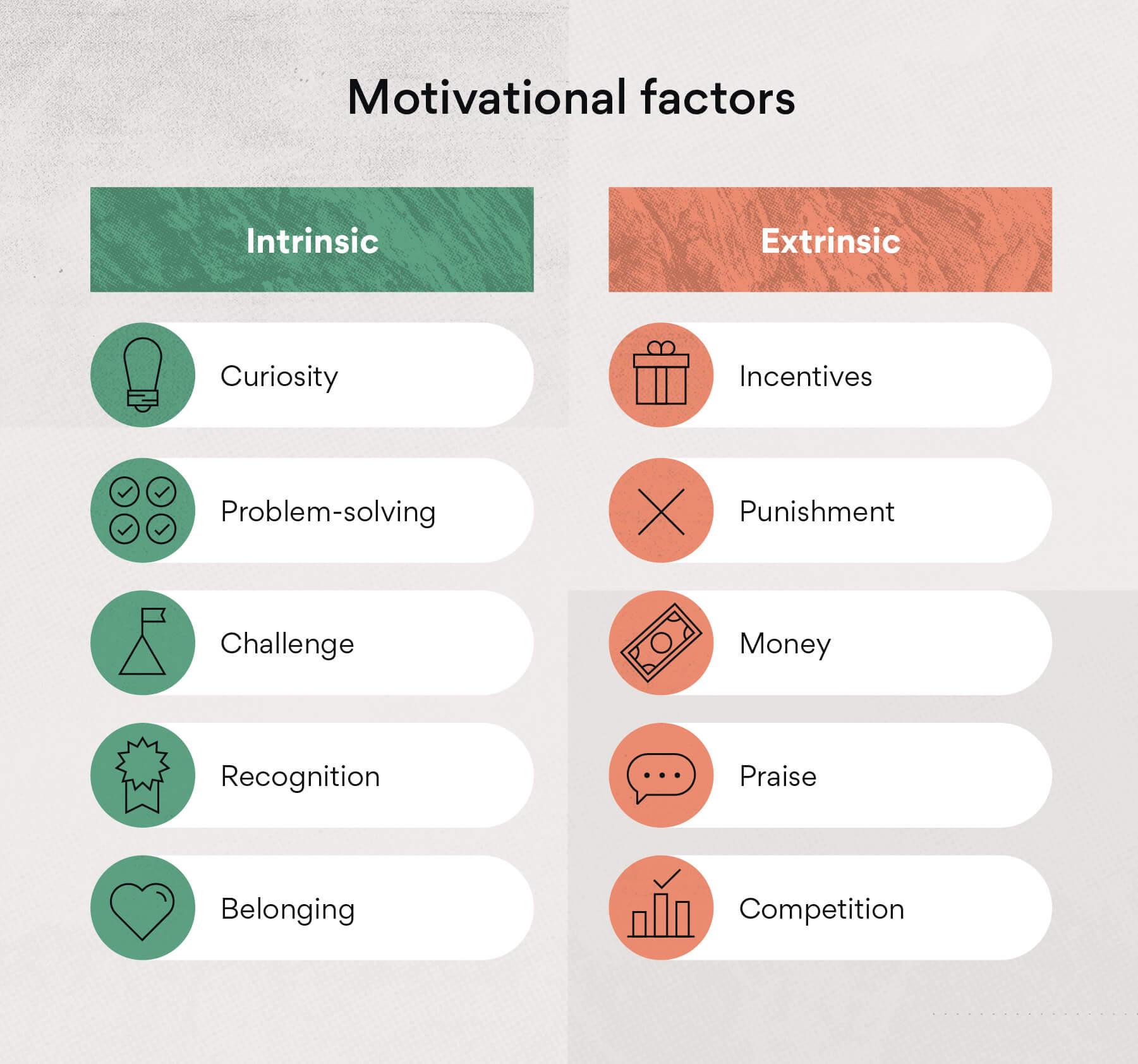 Motivational factors and impact