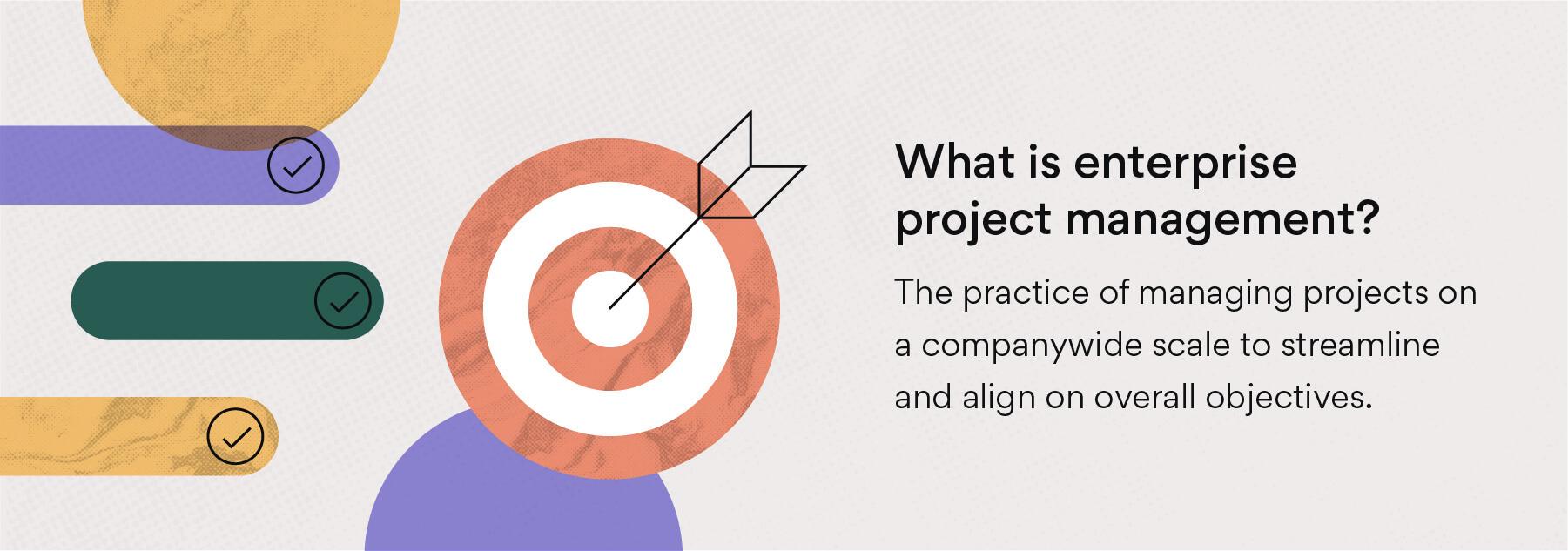 What is enterprise project management?