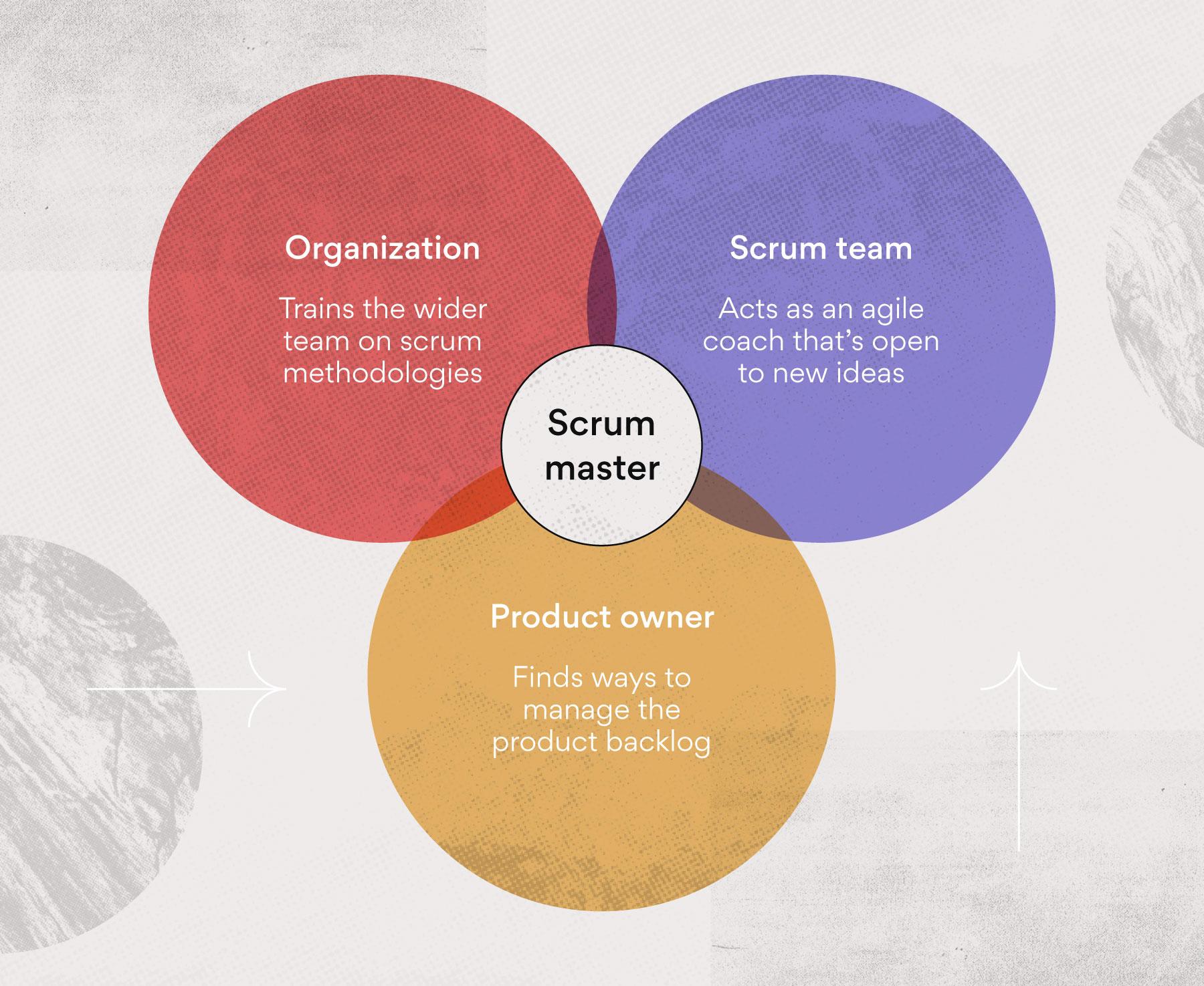 Scrum master roles